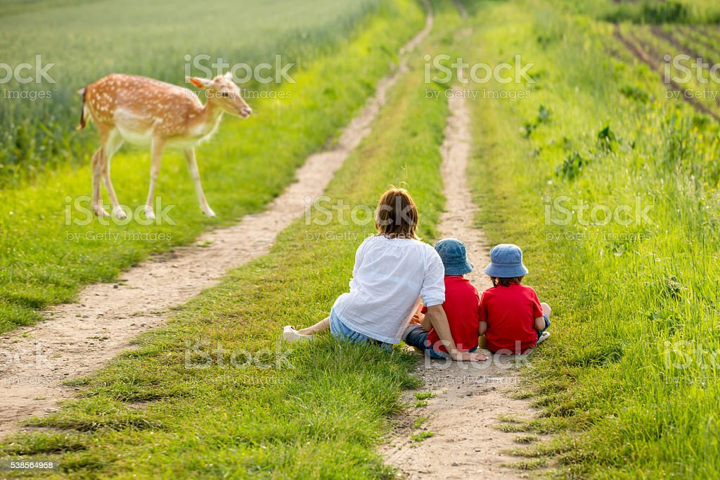 Young mother with her two children watching young foe stock photo