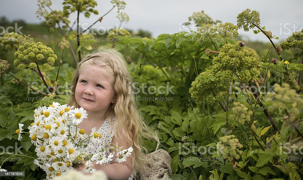Young nature lover royalty-free stock photo