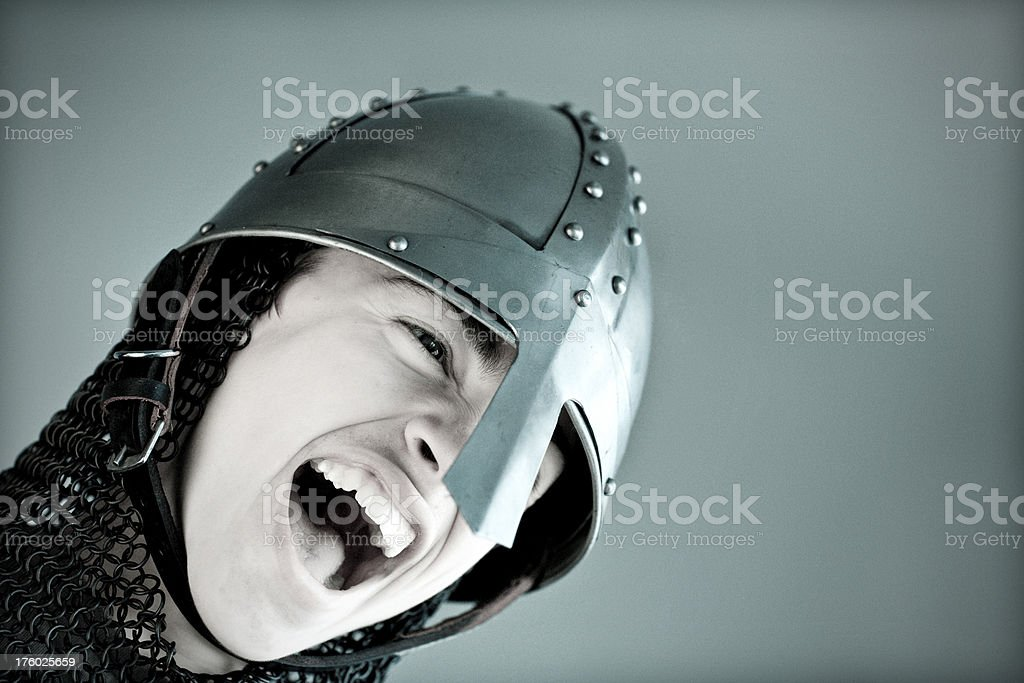 Young Norman Knight royalty-free stock photo