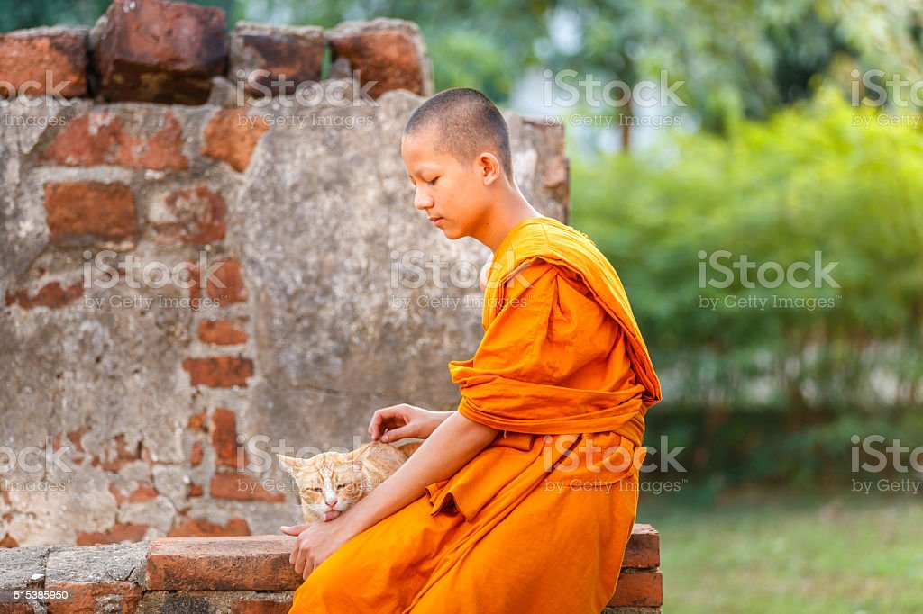Young novice monks playing cat in old temple stock photo