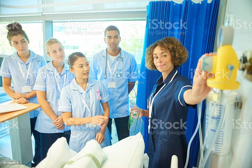 young nurse asks her ward nurse sister questions stock photo