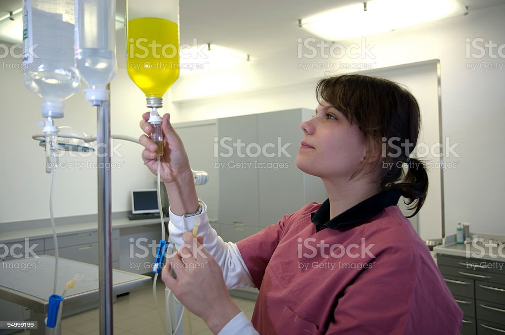 young nurse is preparing an infusion stock photo