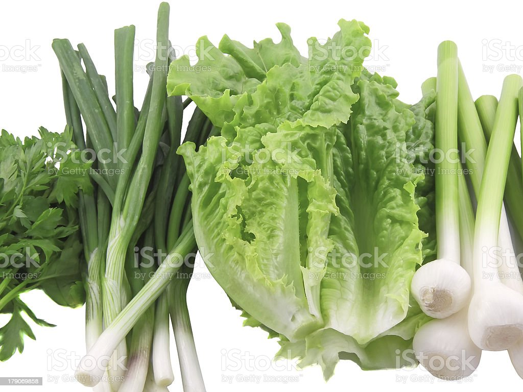 Young onion, garlic and letucce. Isolated. royalty-free stock photo