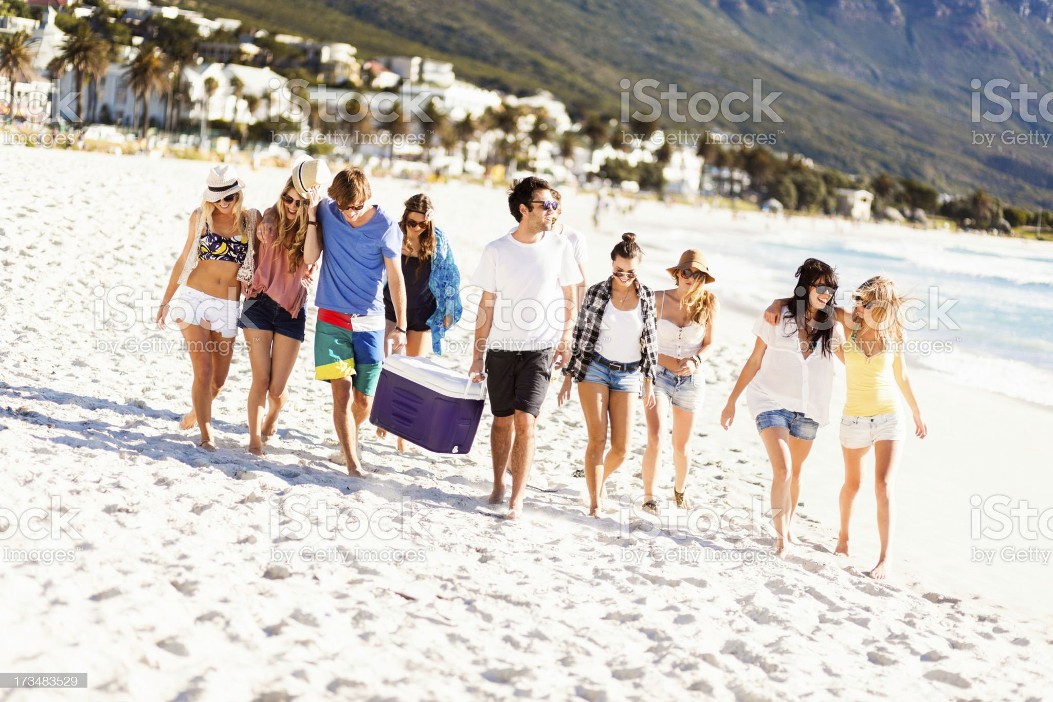 Young People having A Beach Party royalty-free stock photo