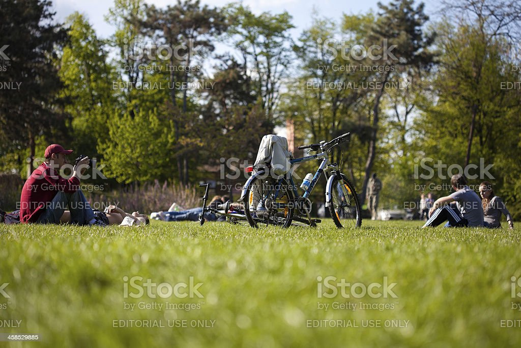 Young People Relaxing On Grass stock photo