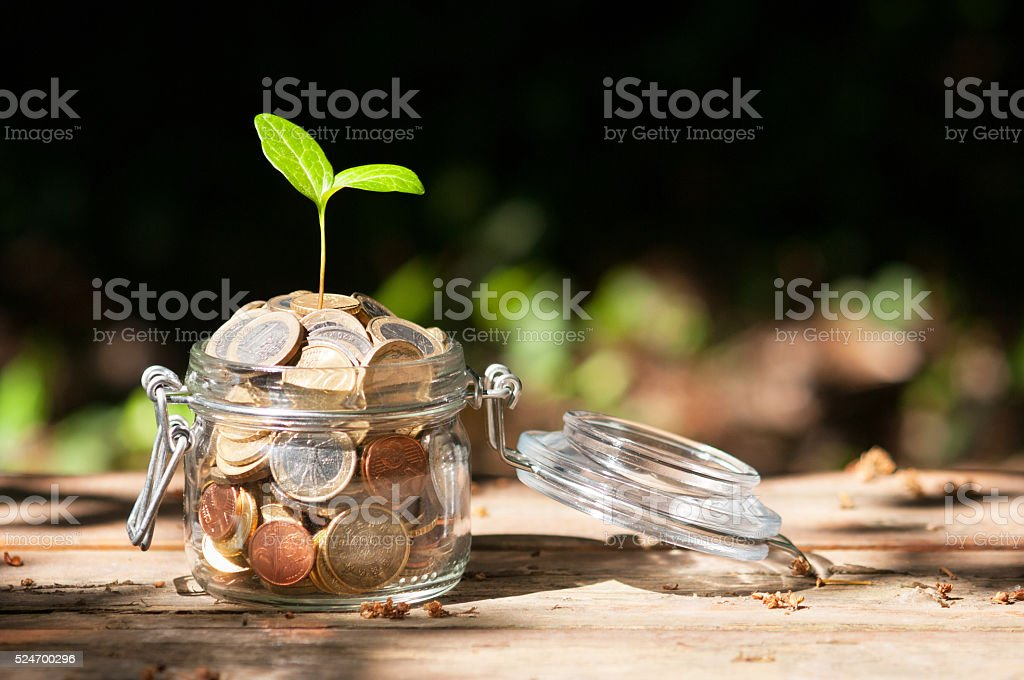Young Plant Growing From A Jar Full Of Euro Coins stock photo