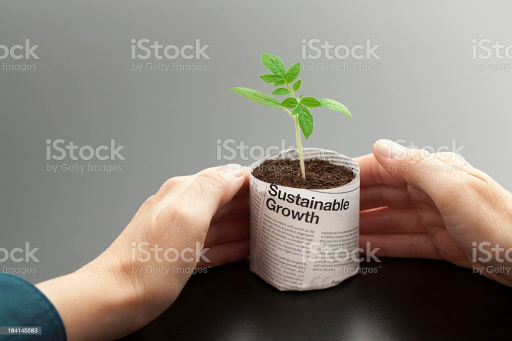 A young plant growing in a newspaper pot being held by hands royalty-free stock photo