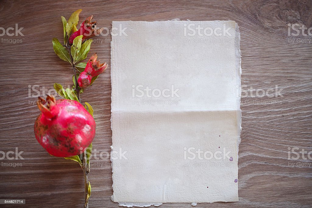 Young pomegranate fruit on a branch with leaves stock photo