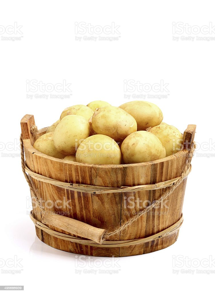 Young potato in a bucket stock photo