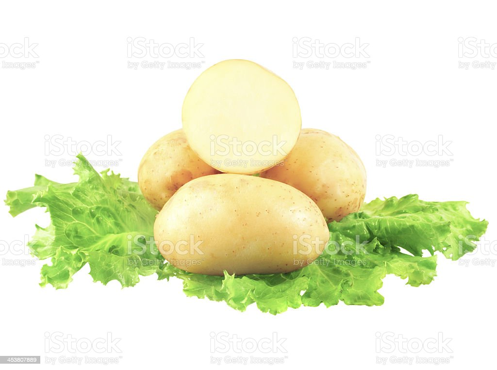 Young potatoes, decorating of lettuce . Isolated royalty-free stock photo