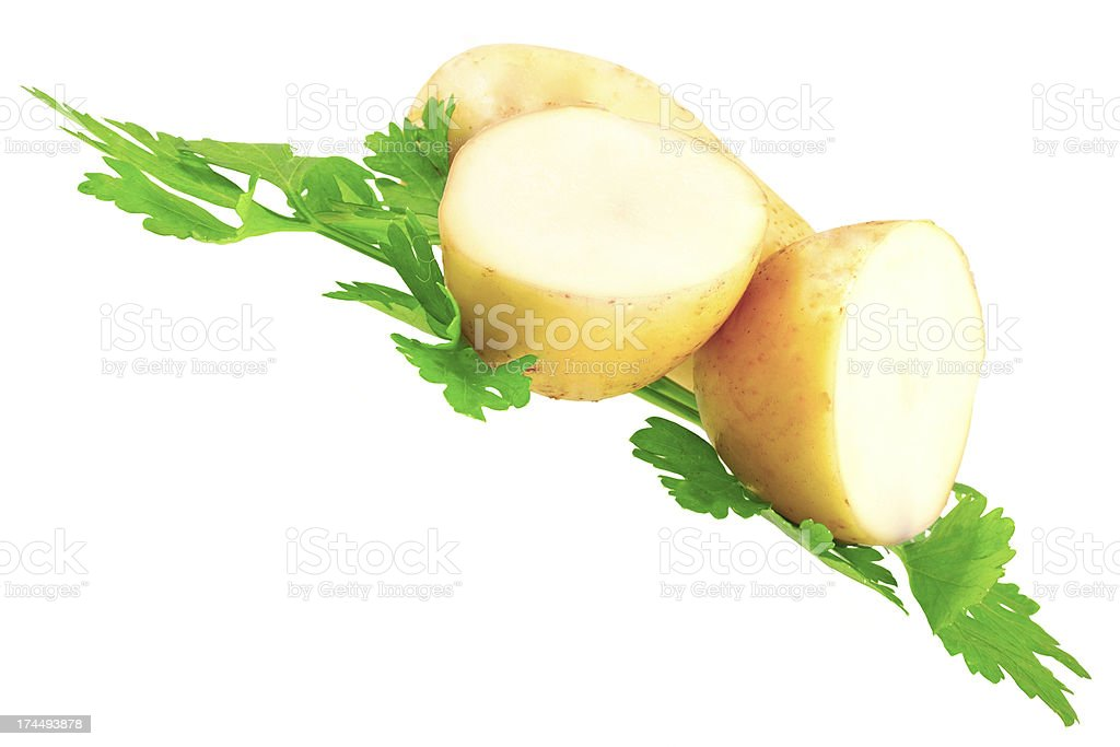 Young potatoes, decorating of parsley . Isolated royalty-free stock photo