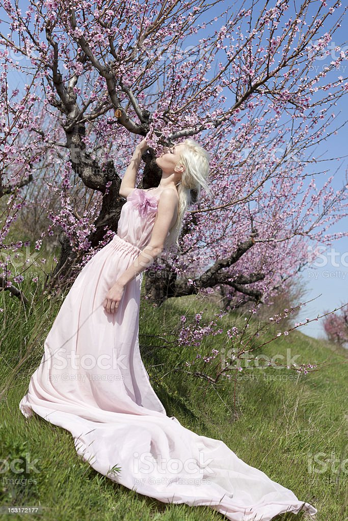 Young pretty blond woman royalty-free stock photo