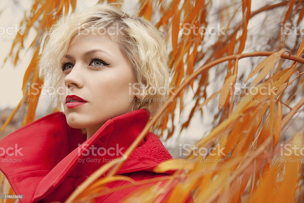 young pretty woman at the autumn park royalty-free stock photo