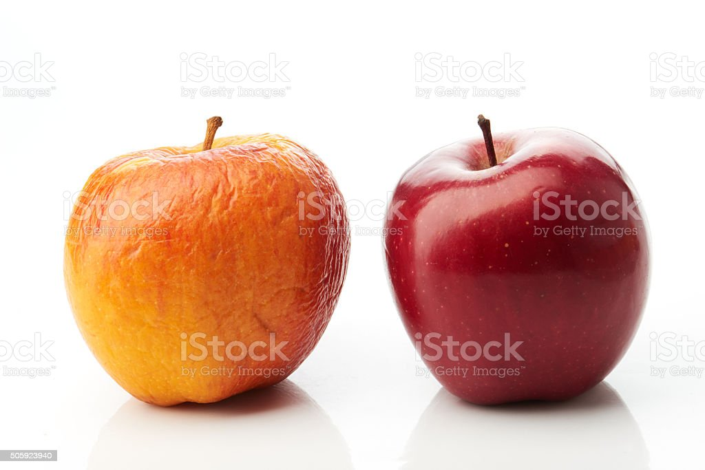 Young red and old yellow apples stock photo