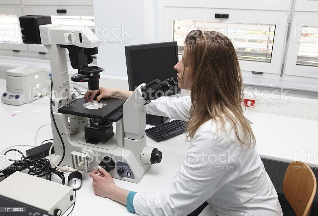 Young researcher at the misroscope...scene from a blood bank royalty-free stock photo