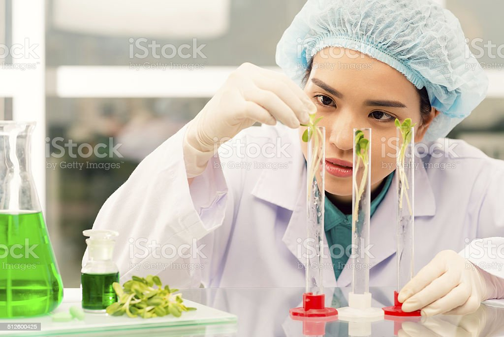 Young researcher stock photo