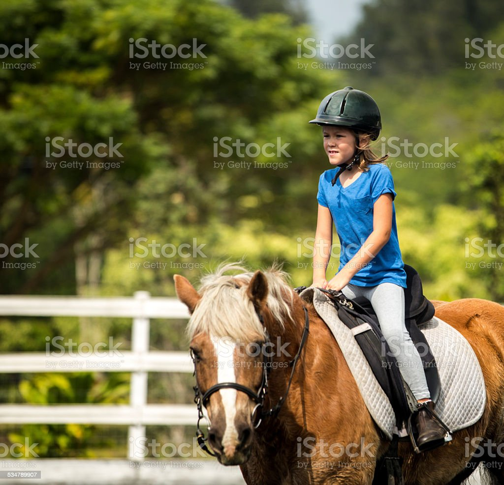 Young Rider stock photo