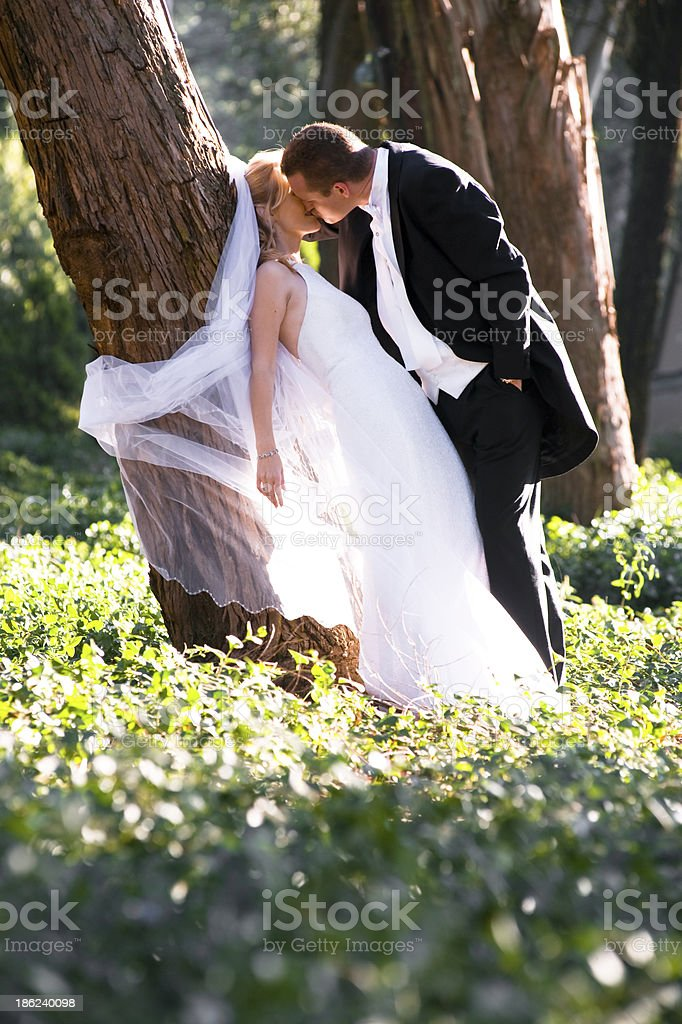 Young romantic couple romantically flirting under a tree royalty-free stock photo