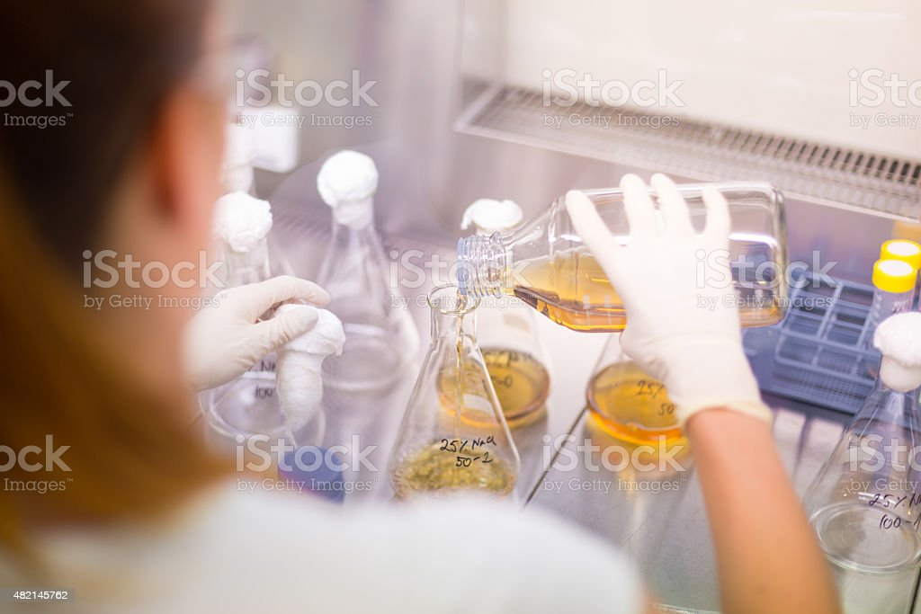 Young scientist pipetting solution. stock photo