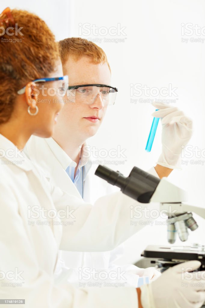 Young Scientists at work in a lab. royalty-free stock photo