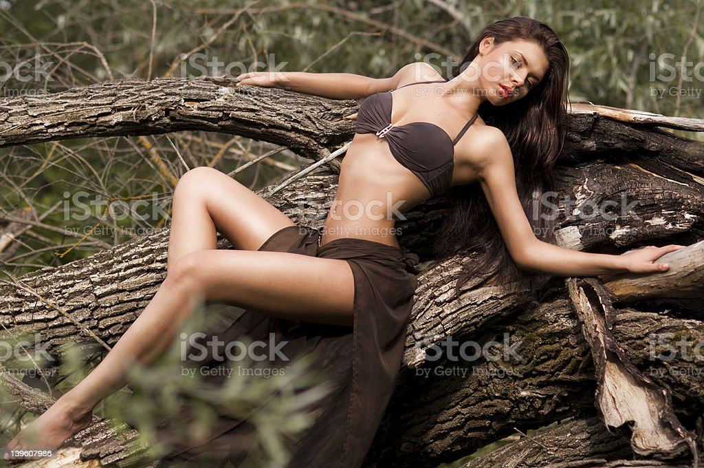 young sexy woman in a swimsuit royalty-free stock photo