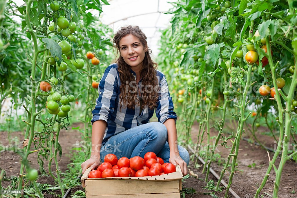 Young smiling agriculture woman worker stock photo