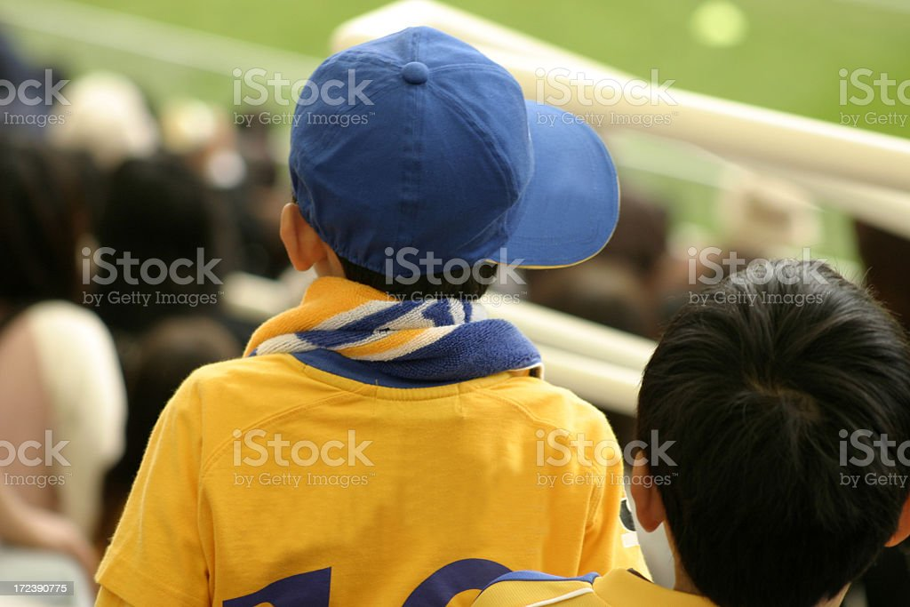 Young soccer fan royalty-free stock photo