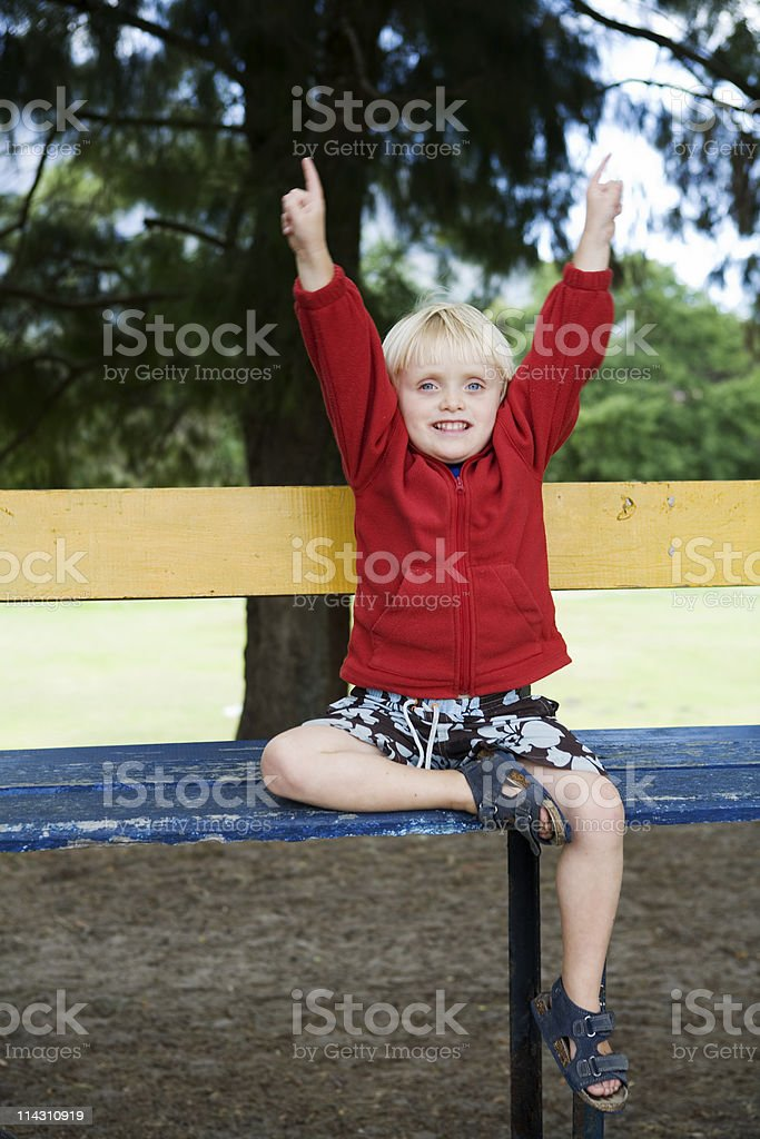 Young sports fan royalty-free stock photo