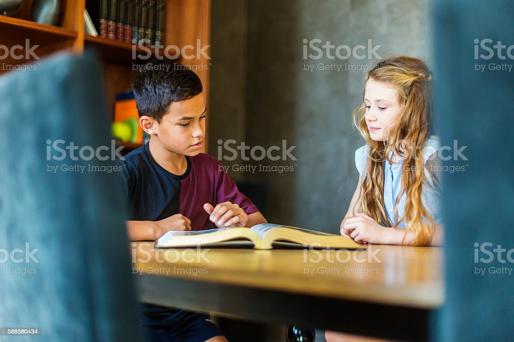 Young Students of Diverse Race Studying Together in New Zealand stock photo