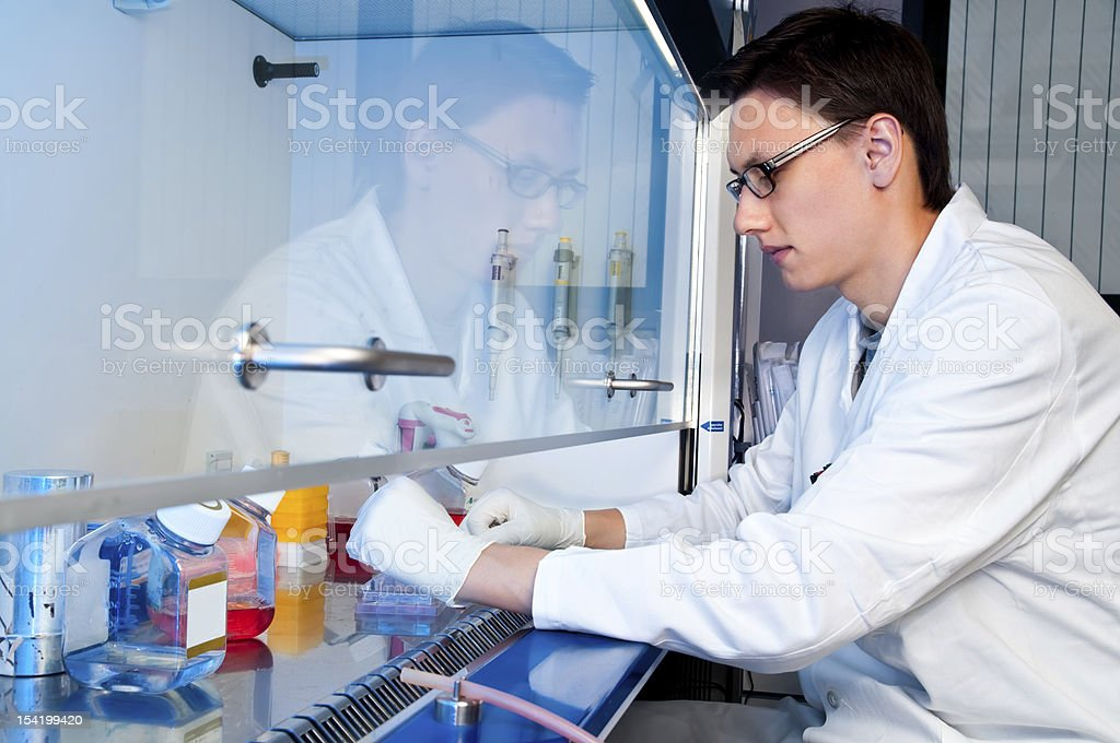 Young tech works with cell culture royalty-free stock photo