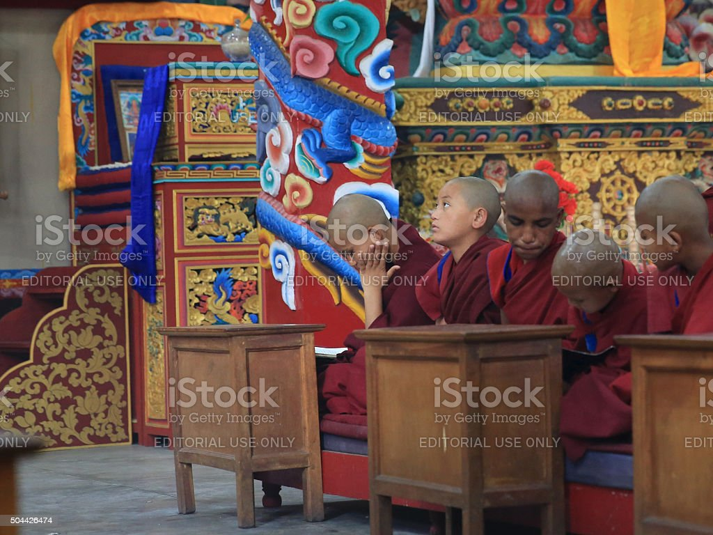 Young Tibetan monk in prayer stock photo