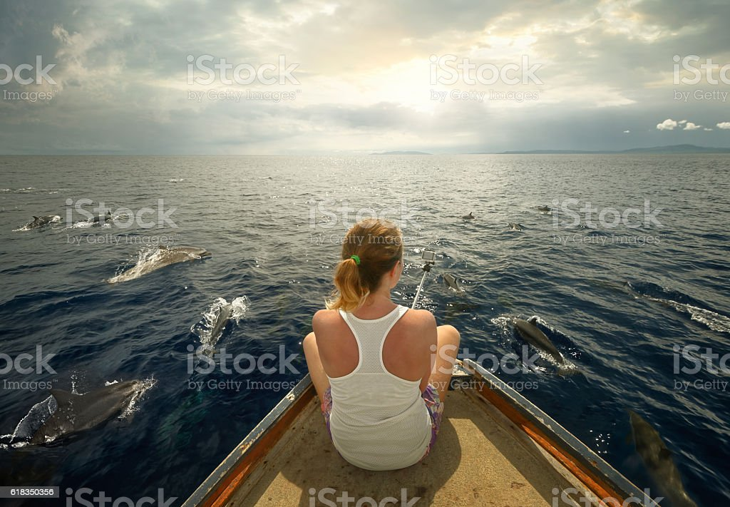 Young traveler sitting on boat and filmed flock of dolphin stock photo