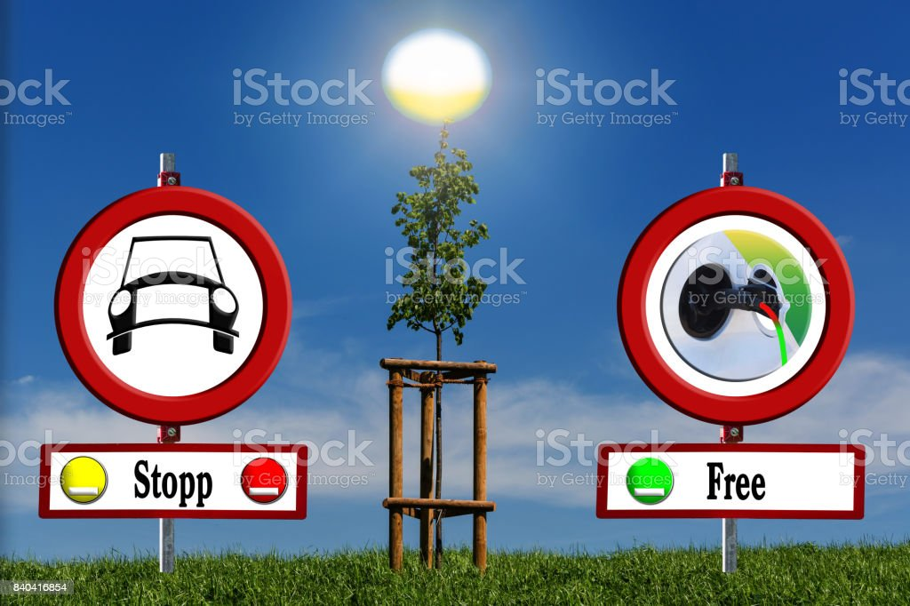 Young tree on green field with road signs stock photo