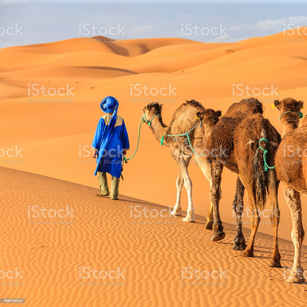 Young  Tuareg with camel on Western Sahara Desert in Africa stock photo