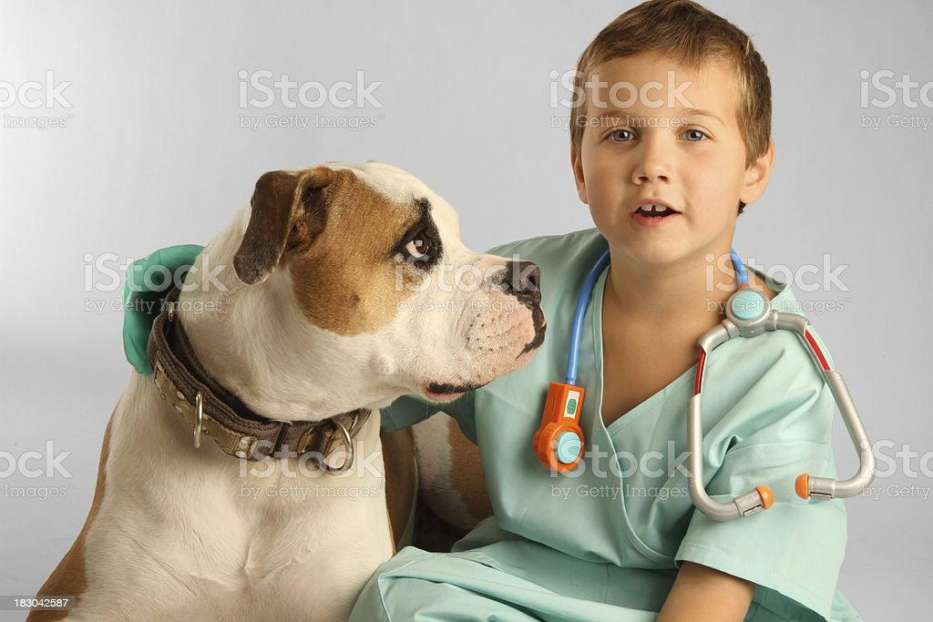 Young Vet with Dog. stock photo