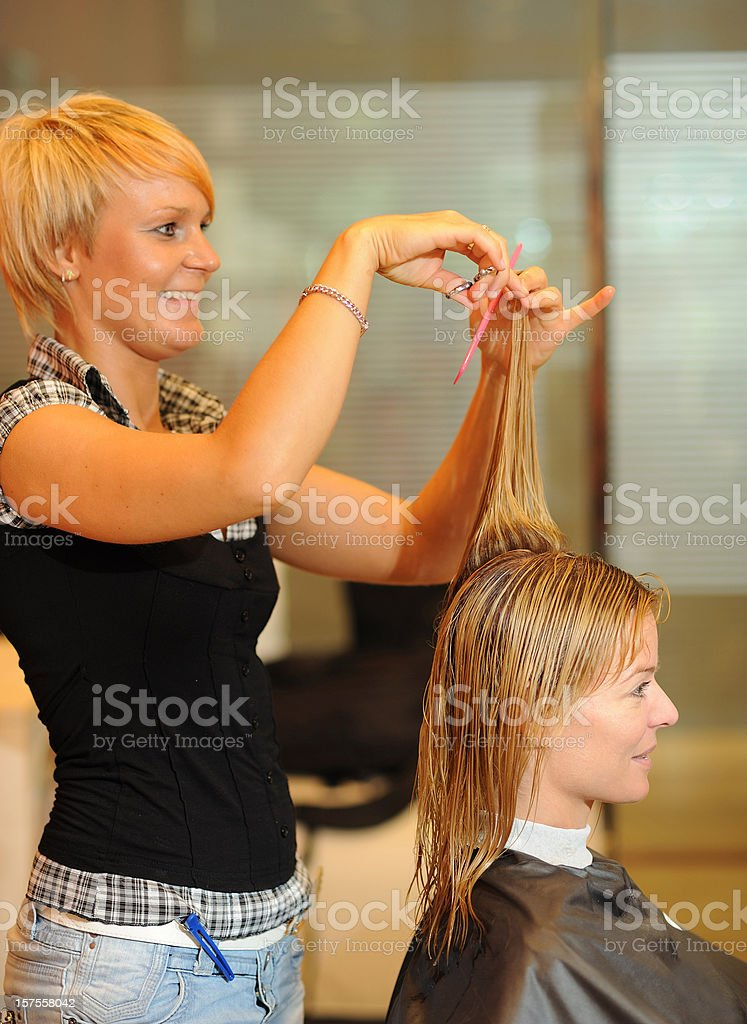 Young Woman and the Hairdresser royalty-free stock photo