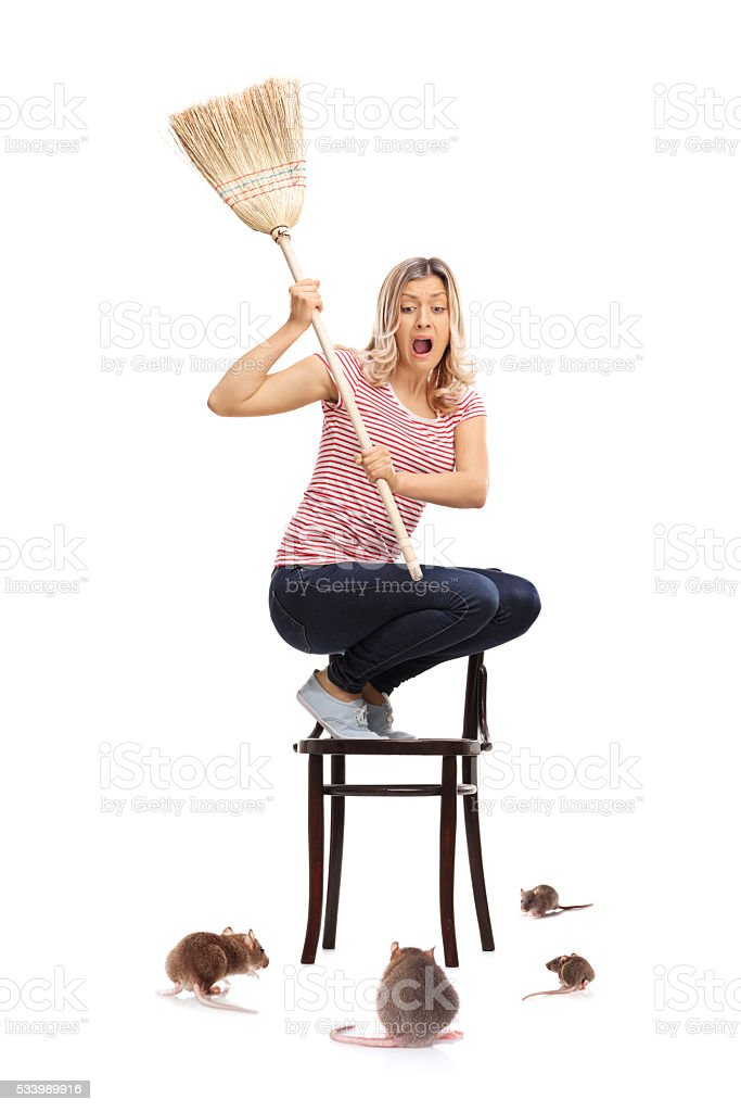 Young woman attacked by rats stock photo