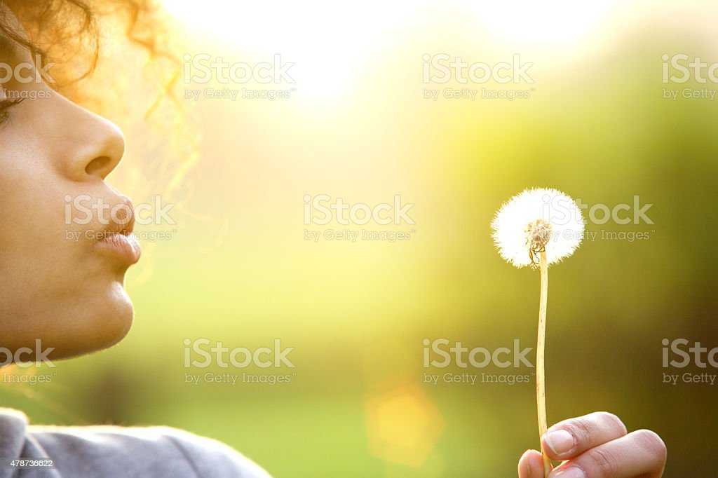 Young woman blowing dandelion flower outdoors stock photo