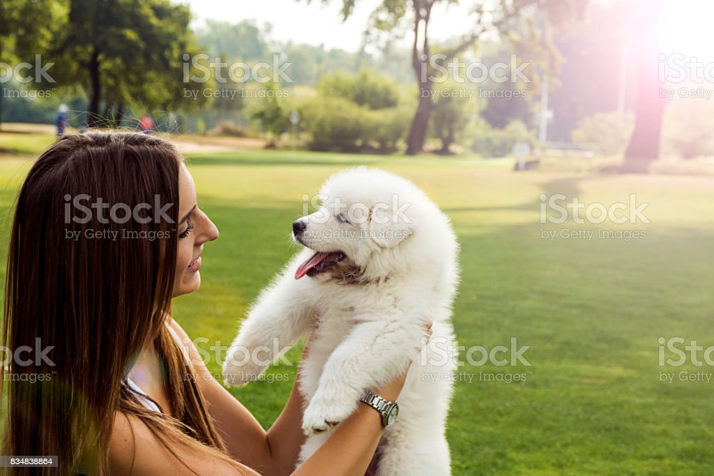 Young woman bonding with her dog in the park stock photo