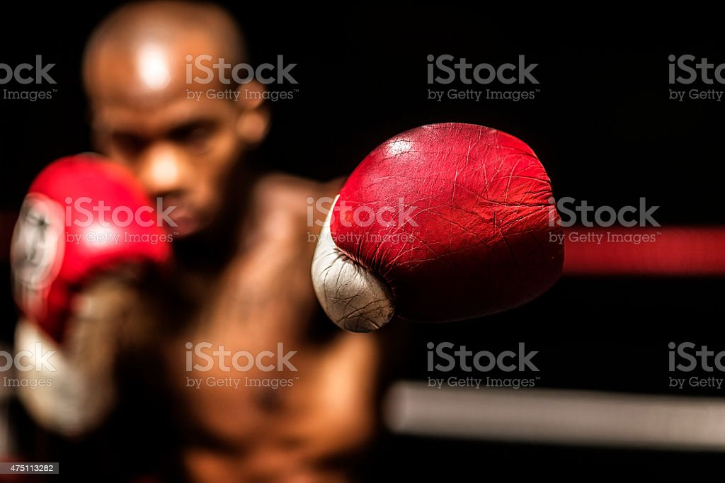 Young woman boxer. stock photo