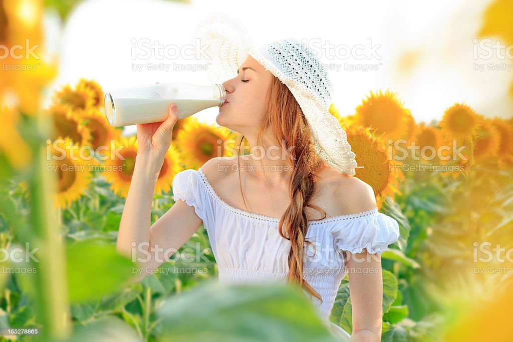Young woman drinking milk in sunflower field royalty-free stock photo