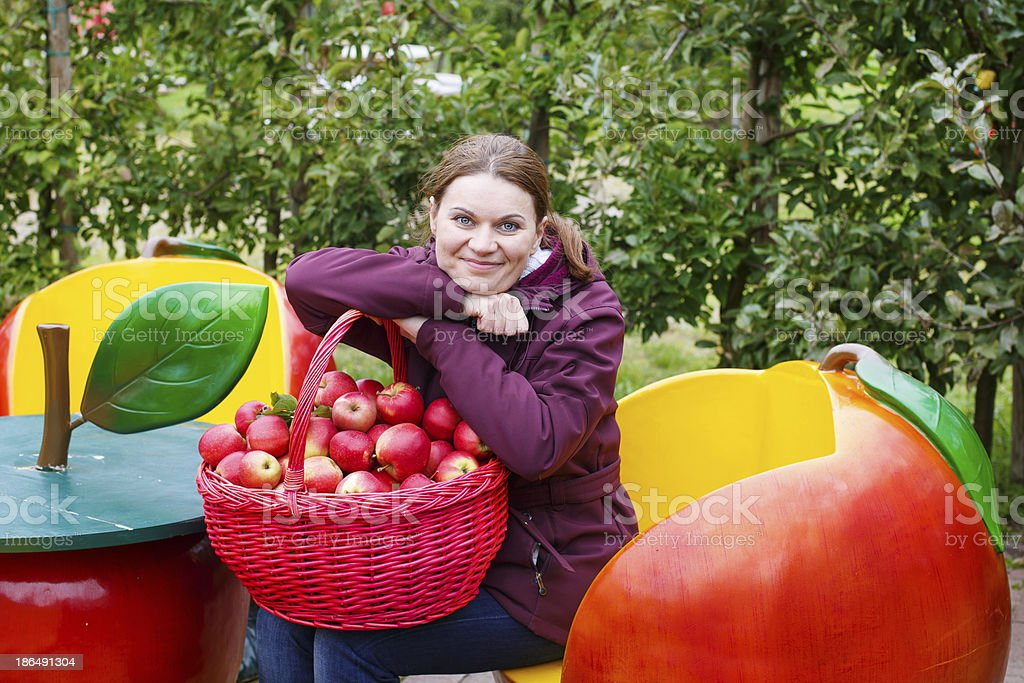 Young woman eating red apples in an orchard stock photo