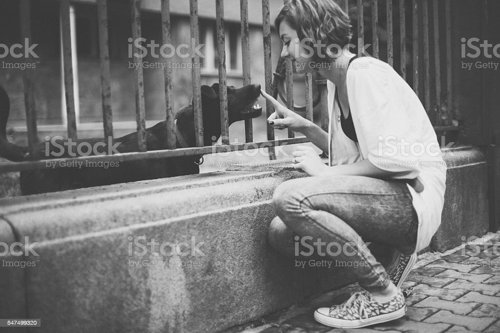 Young woman enjoying a homeless dog stock photo