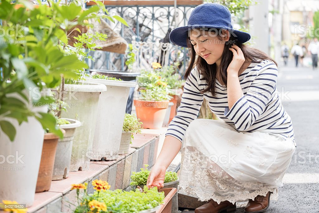 Young Woman Examining Lettuce while Container Gardening in Tokyo, Japan stock photo
