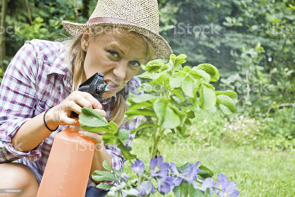 Young woman gardening royalty-free stock photo