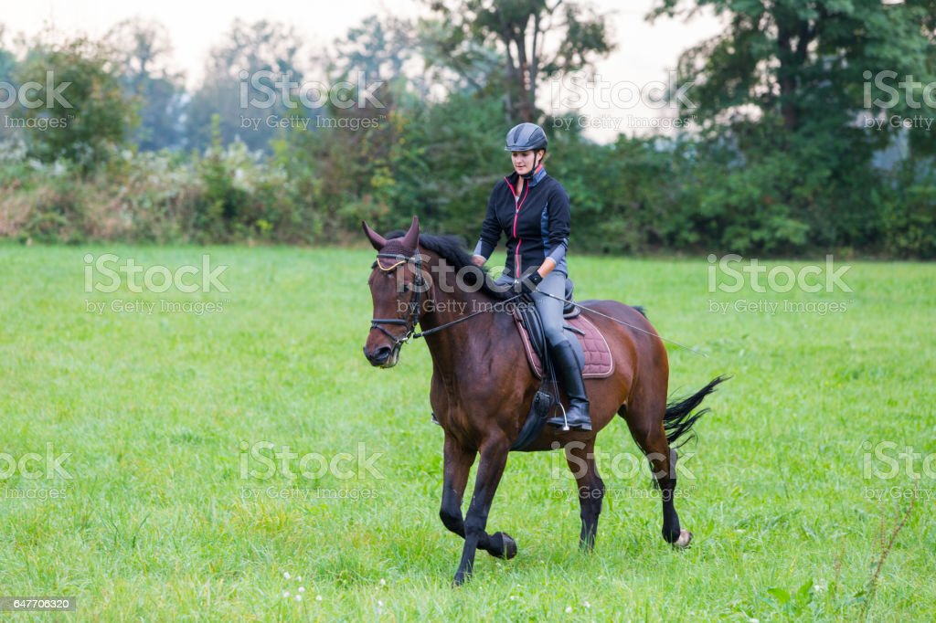 Young woman girl horseback riding on a meadow stock photo