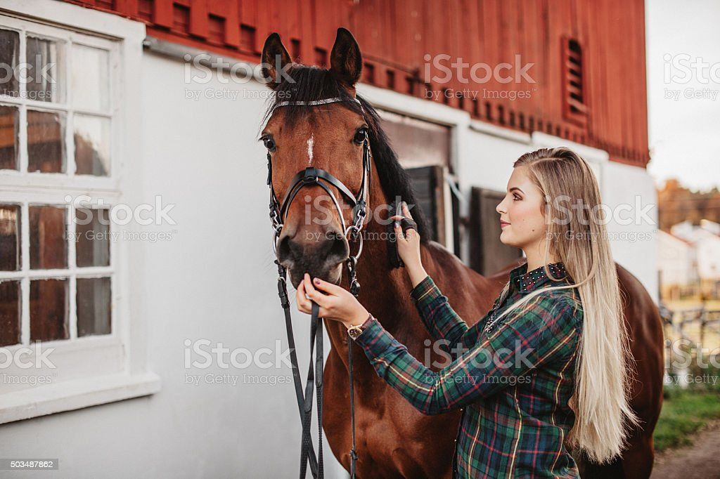 Young woman grooming her horse at the stable stock photo