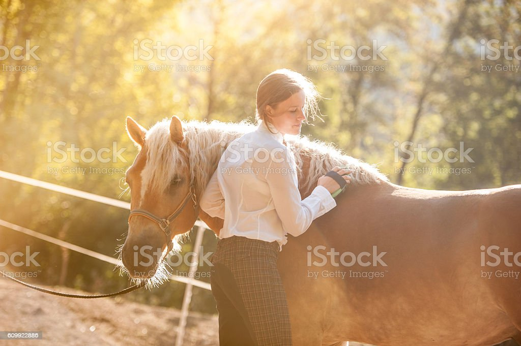 Young Woman Grooming her Horse stock photo