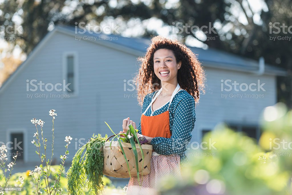 Young woman harvesting vegetables on organic farm stock photo