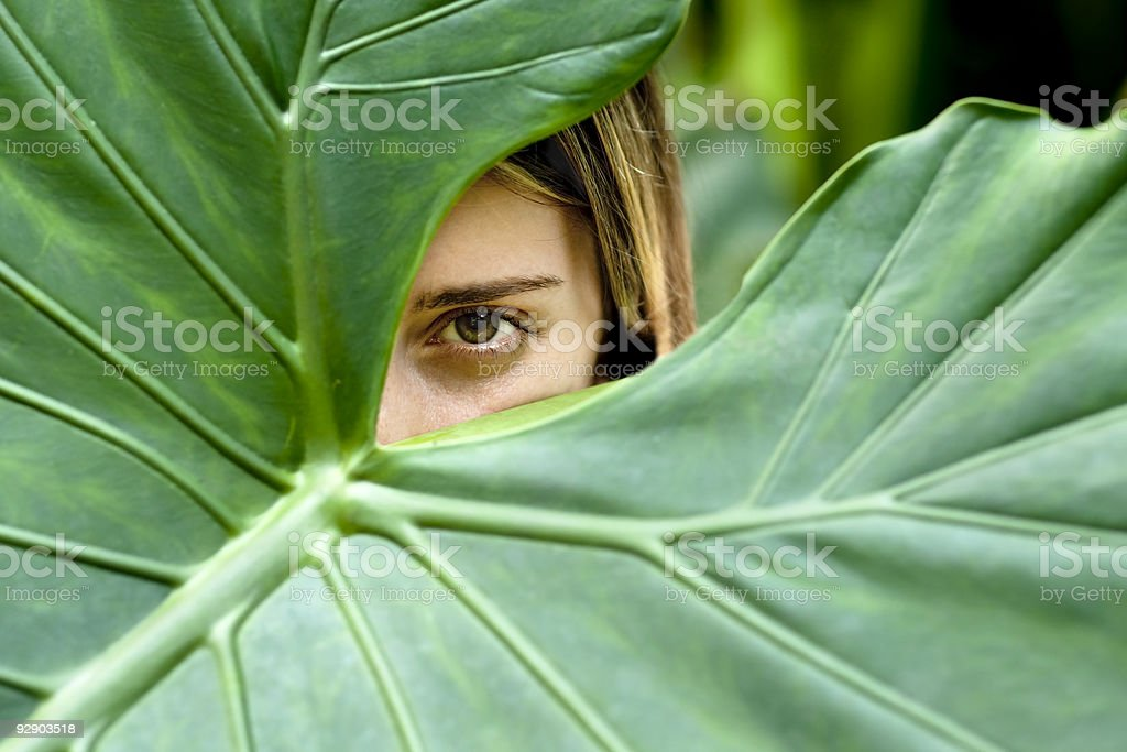 Young woman hiding behind large leaves stock photo